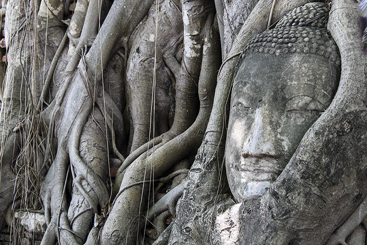 Random Bits: Observations on Thailand