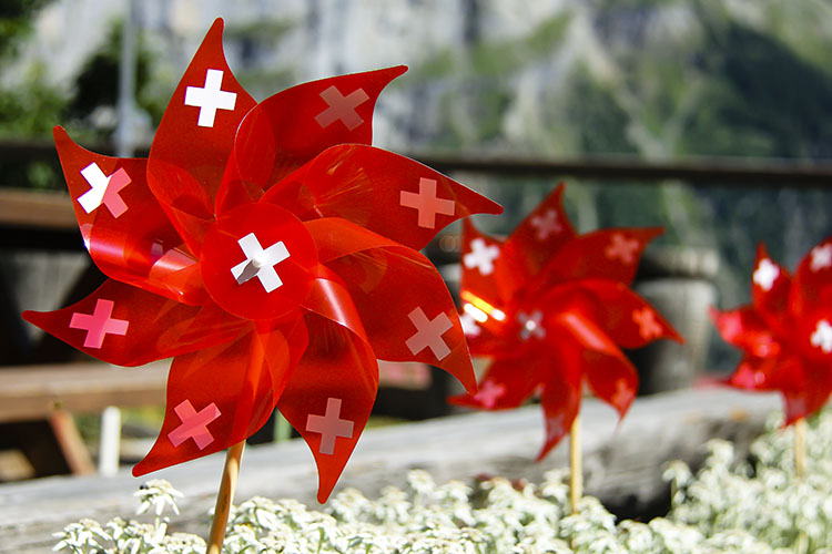 Switzerland Travel Facts