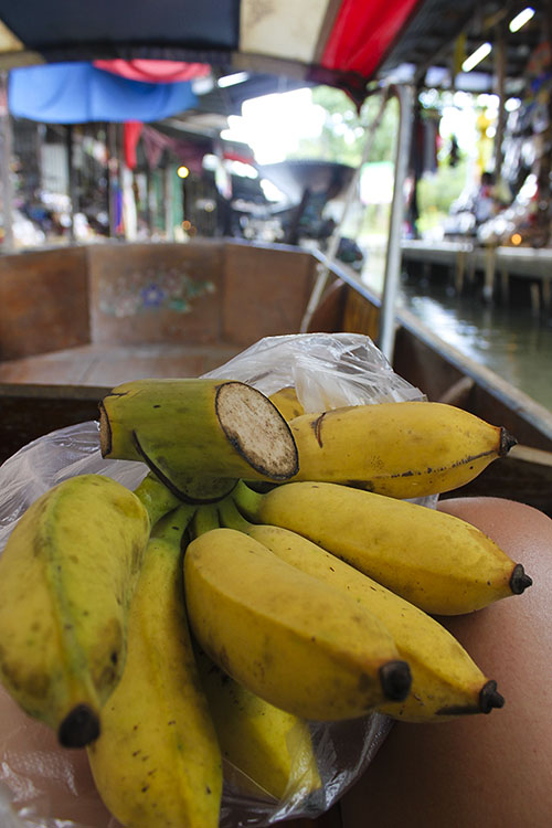 floating market - fresh bananas for the day