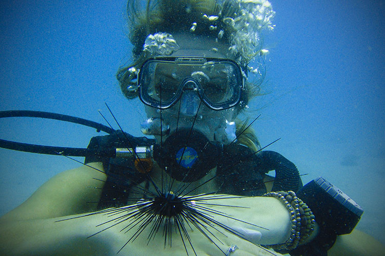 Koh Tao: Learning to SCUBA