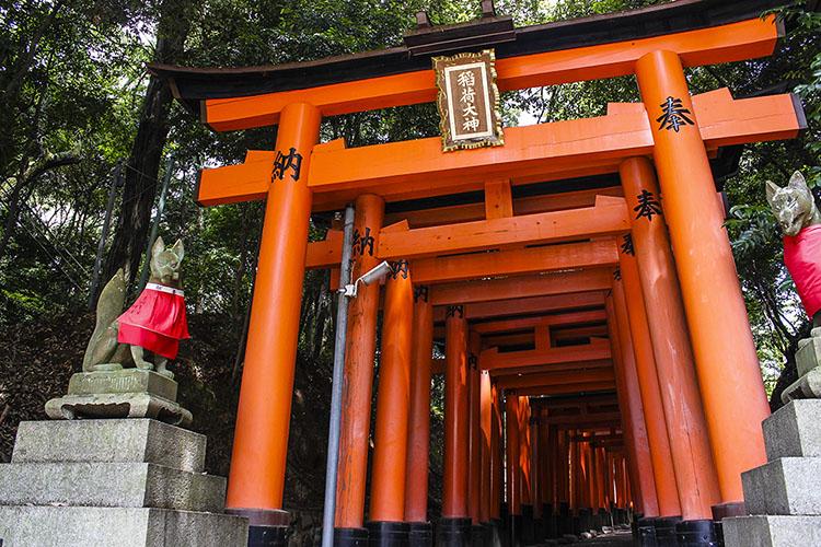 Day Trips from Kyoto: Inari Shrine & Nara