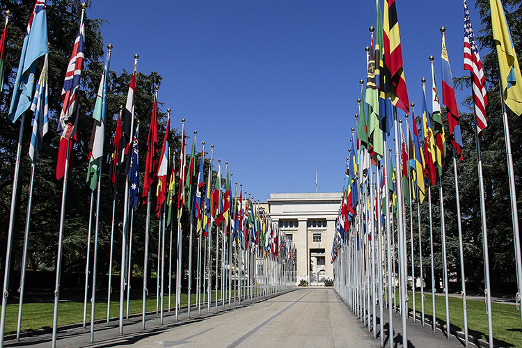 Geneva and the United Nations