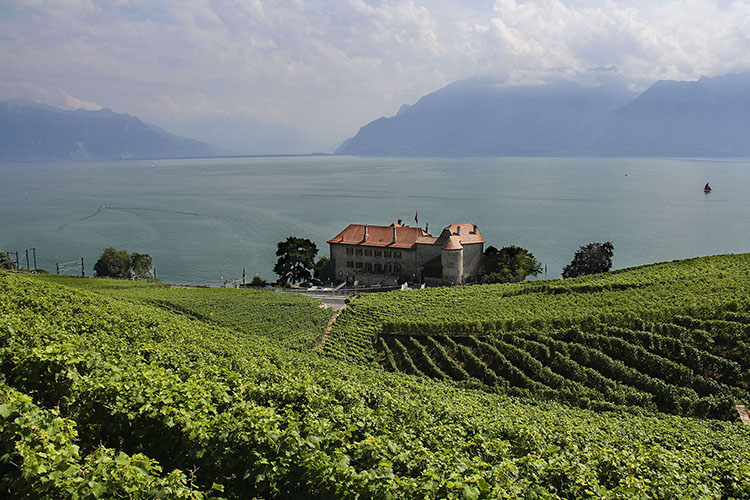 Swiss Riviera Guide
