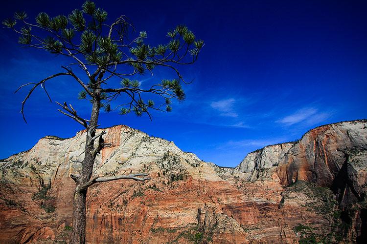 Angels Landing Hike 1 - Zion - Utah - Wanderlusters