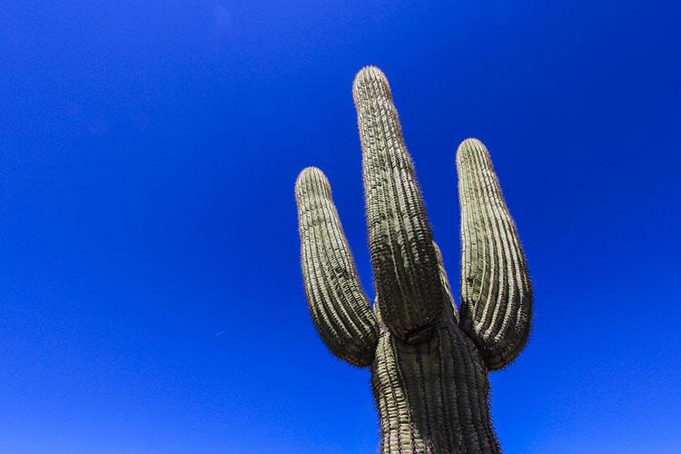 American Southwest Travel Wrap-Up
