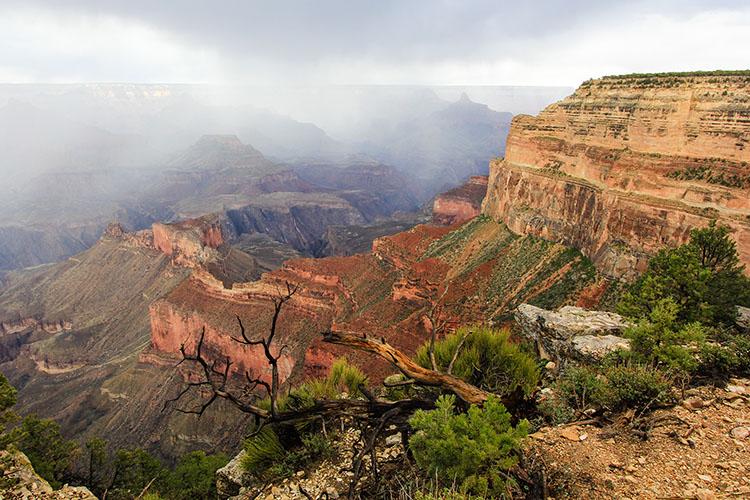Grand Canyon 8 - Arizona - Wanderlusters