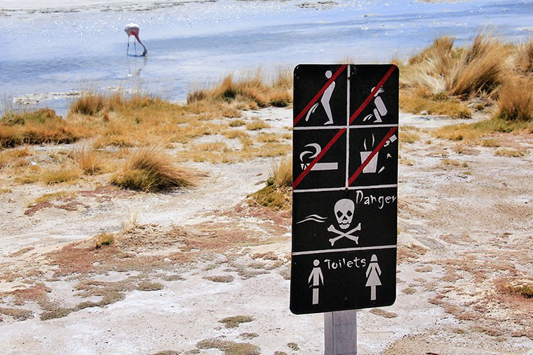 Detailed Sign at Laguna Cañapa - Bolivia Salt Flats Tour - Wanderlusters