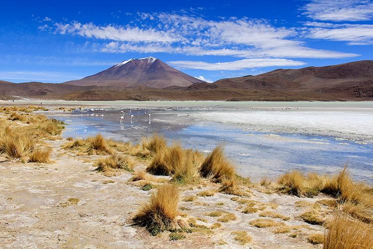 Laguna Cañapa Views - Bolivia Salt Flats Tour - Wanderlusters