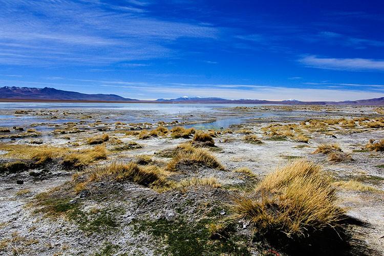 Laguna Chalviri - Bolivia Salt Flats Tour - Wanderlusters