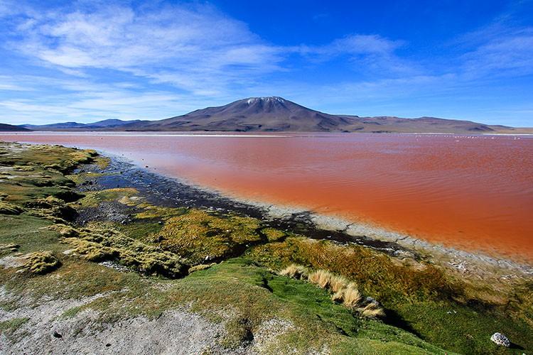 Laguna Colorada - Red Lagoon - Bolivia Salt Flats Tour - Wanderlusters