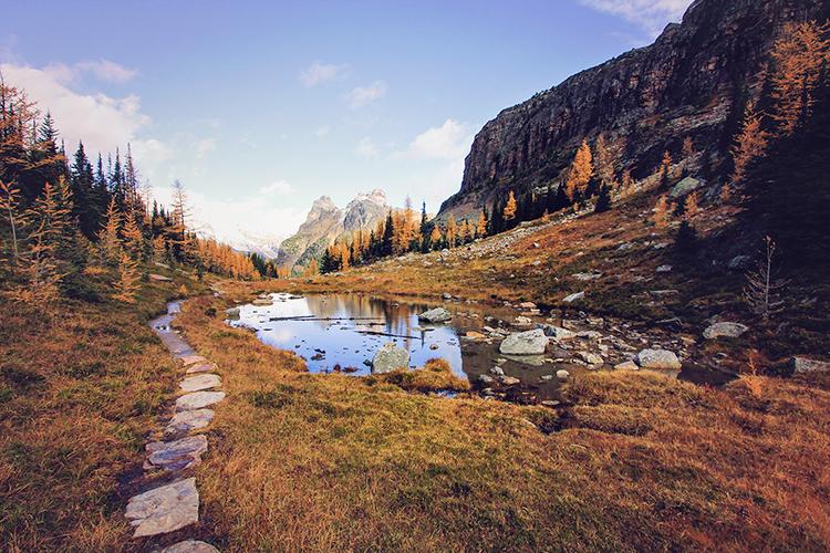 Lake OHara Autumn Hike - BC Canada - Wanderlusters 2