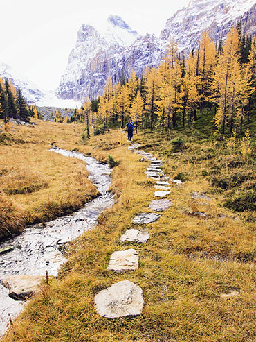 Lake OHara Hiking Path - BC Canada - Wanderlusters