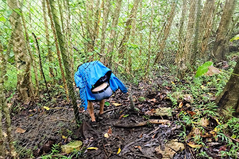 Haiku Stairs Fence Hole - Oahu Hawaii - Wanderlusters (950)
