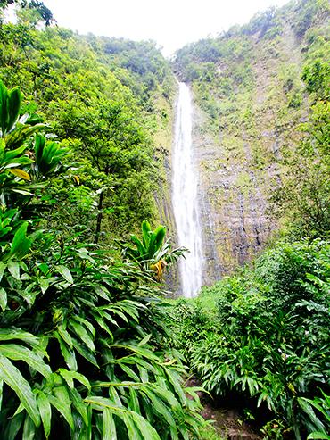 Pipiwei Trail Waterfalls - Maui Hawaii - Wanderlusters (3x4)