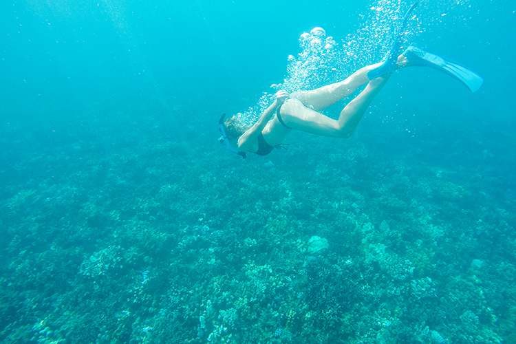 Snorkelling-in-Maui-Hawaii