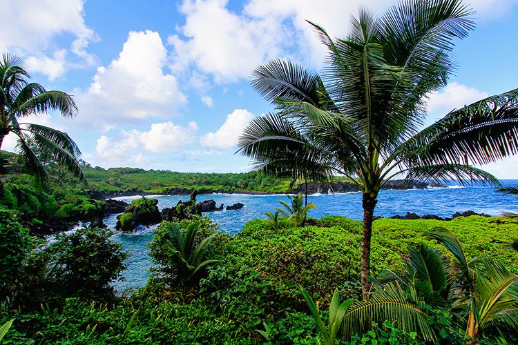 Waianapanapa Park Views - Road to Hana - Maui Hawaii - Wanderlusters