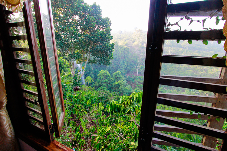 Juliets Villas Room with a Waterfall - Vietnam Easy Riders Tour - Wanderlusters