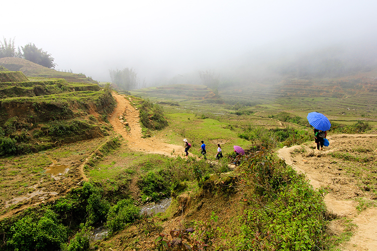 Trekking Around Sapa - Vietnam - Wanderlusters