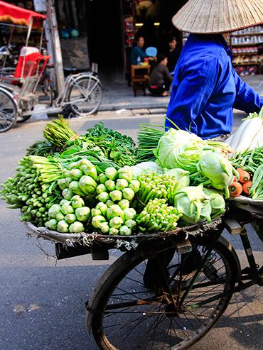 Vegetables on Bike Hanoi Vietnam - Wanderlusters (3x4)