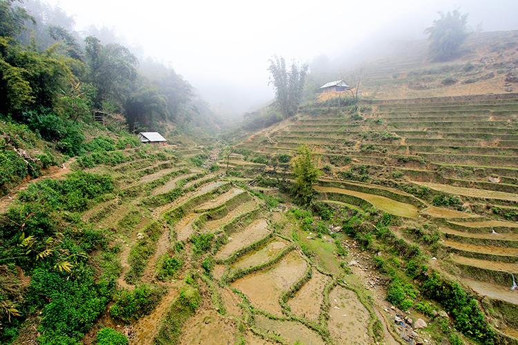 Villages in the Rice Paddies - Sapa Vietnam - Wanderlusters