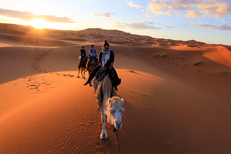 Arabian Nights: Camel Trekking into the Desert